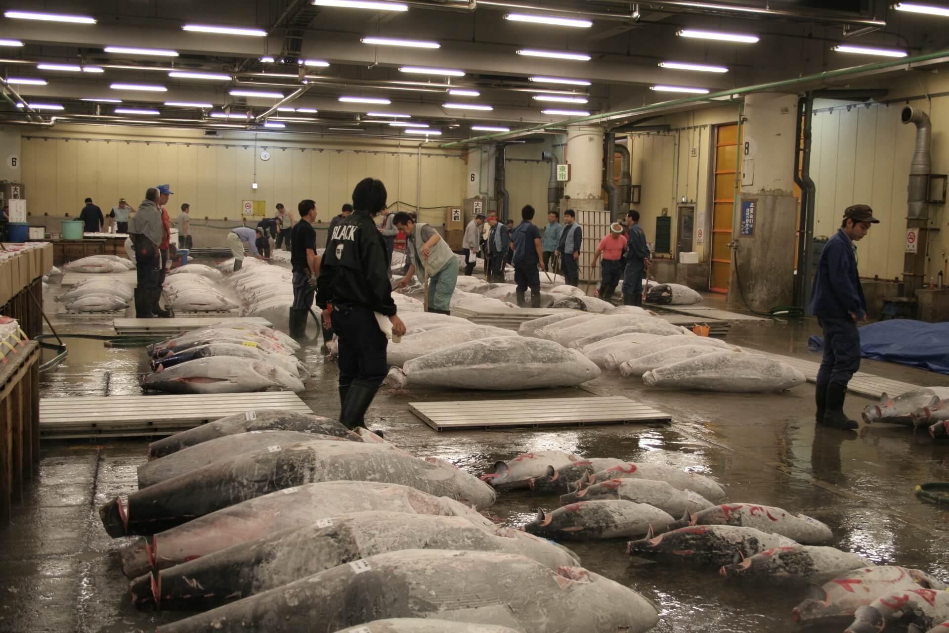 Jean-Marc Lehwald Tsukiji Market